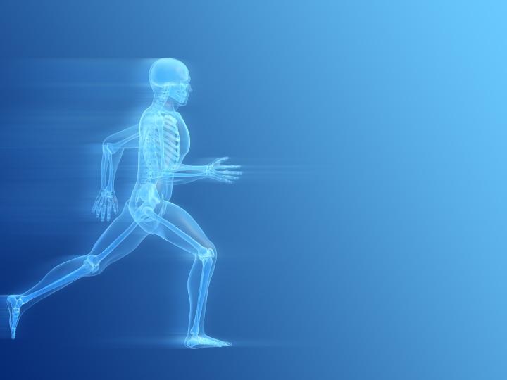 bigstock-Running-Man-Anatomy-1865575.jpg